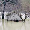 Alluvioni, tornadi, nubifragi, ondate di caldo                         e freddo