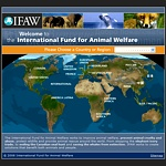 Difesa degli animali e loro diritti: IFAW - International Fund for Animal Welfare