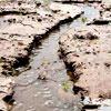 Erosione e conservazione del suolo