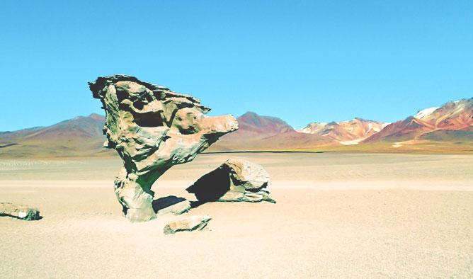Albero di pietra della Riserva nazionale di fauna andina Eduardo Avaroa in Bolivia
