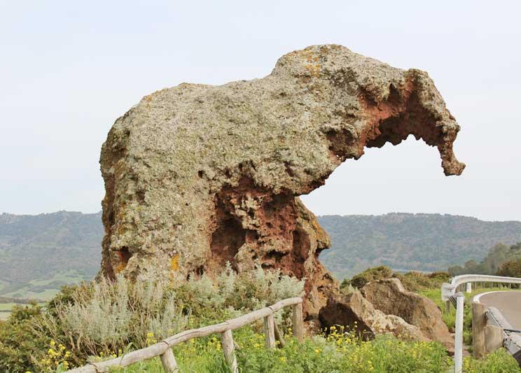 Roccia dell'elefante Sardegna