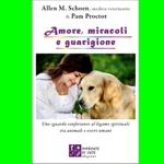 Libro, recensione, Amore miracoli e guarigioni, Allen Schoen, Pam Proctor