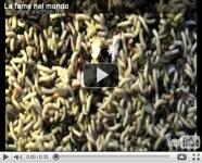 La fame nel mondo, video
